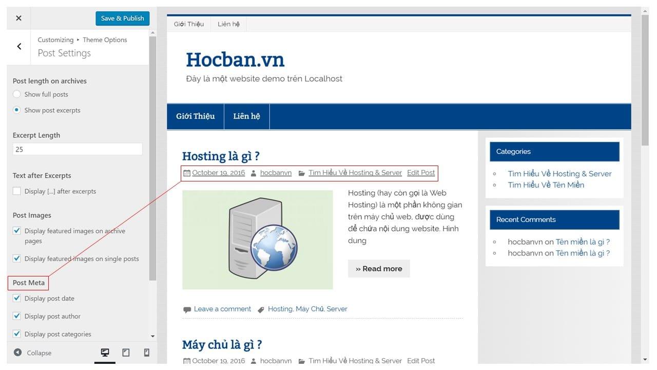 Tuy chinh Post Meta tren WordPress