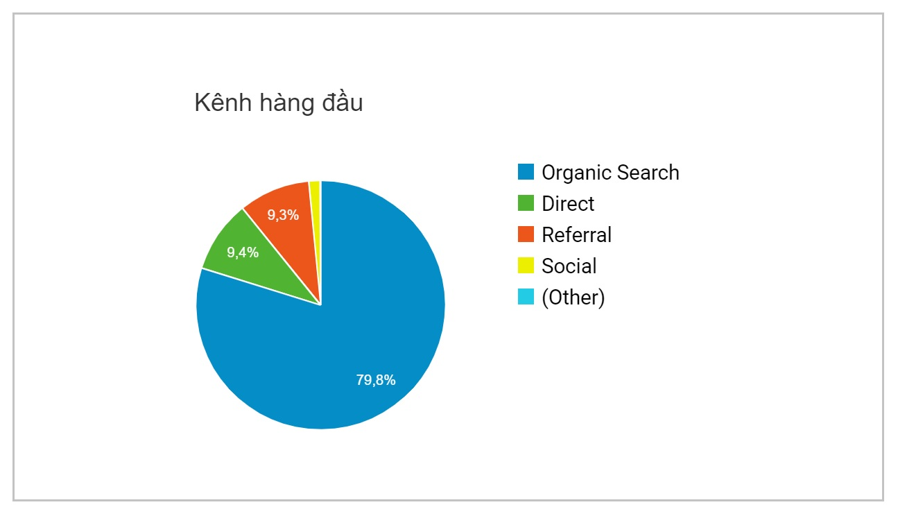 Bieu do nguon truy cap hocban.vn theo Google Analytics